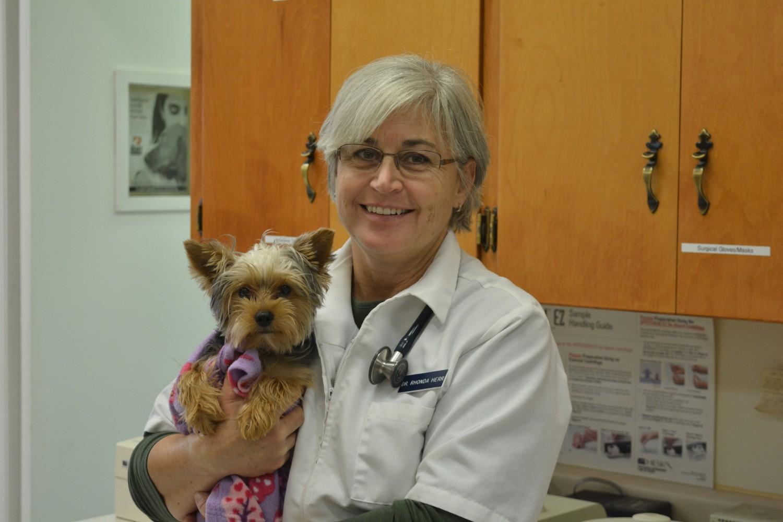 Dayton Animal Clinic, Dayton, VA, Dr. Rhonda Herr, DVM