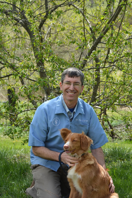 Dayton Animal Clinic, Dayton, VA, Dr. Kevin Carter, DVM